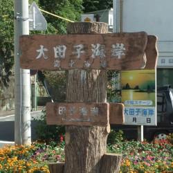 大田子海岸