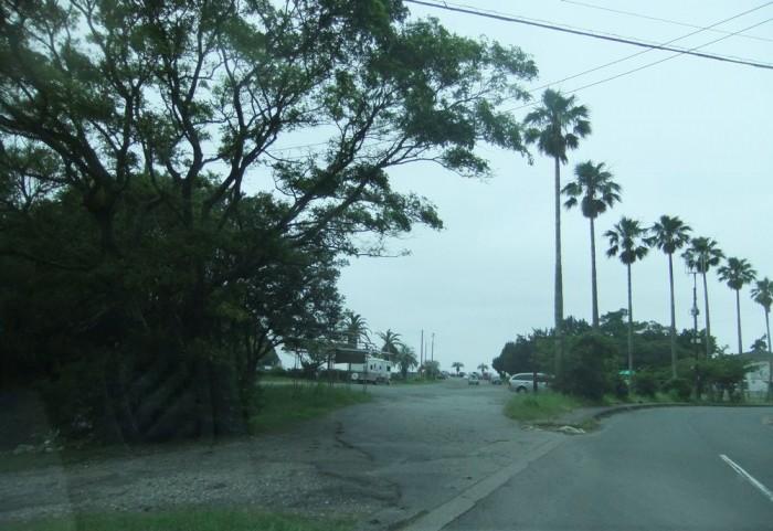 伊東から弓ヶ浜 257