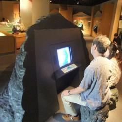 富士山博物館