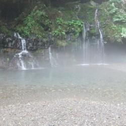 湿原と陣場の滝 070