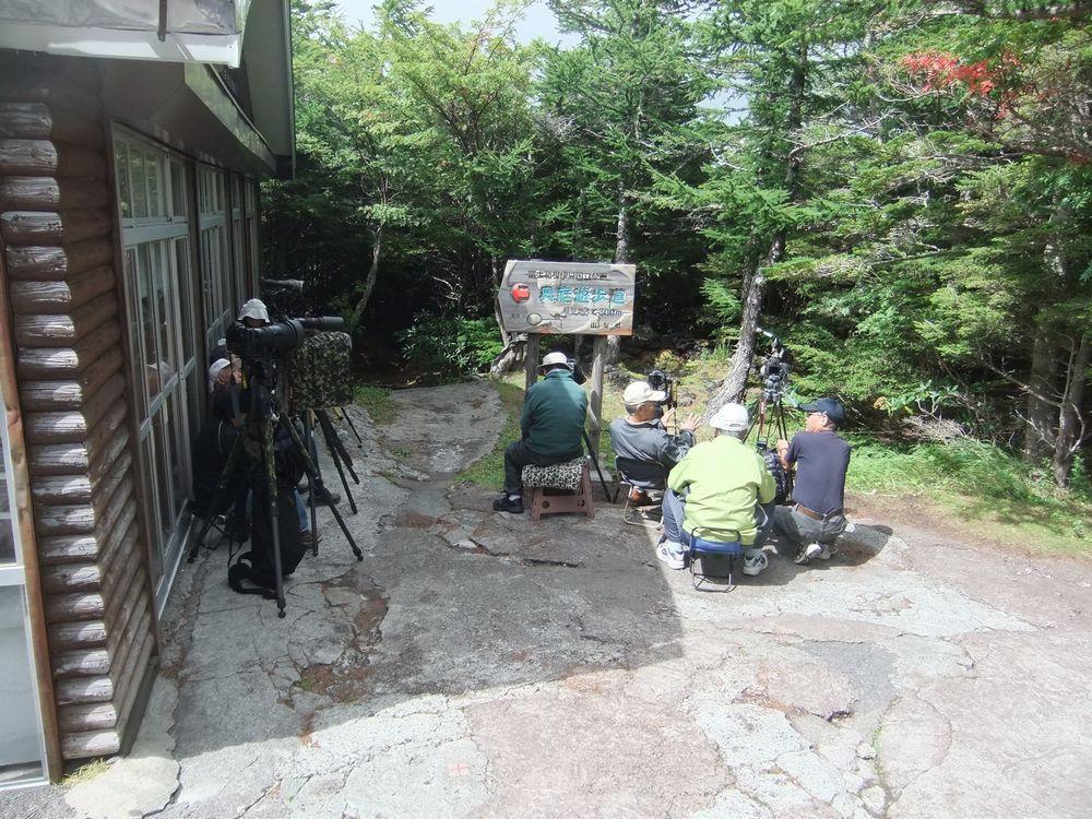 森の自然誌:野鳥: 年 富士山奥庭探鳥記