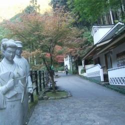 「河津七滝」の紅葉