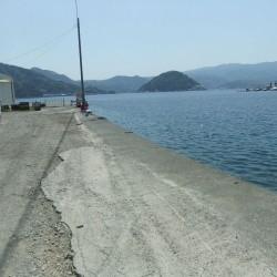 「江浦」岸壁の釣り