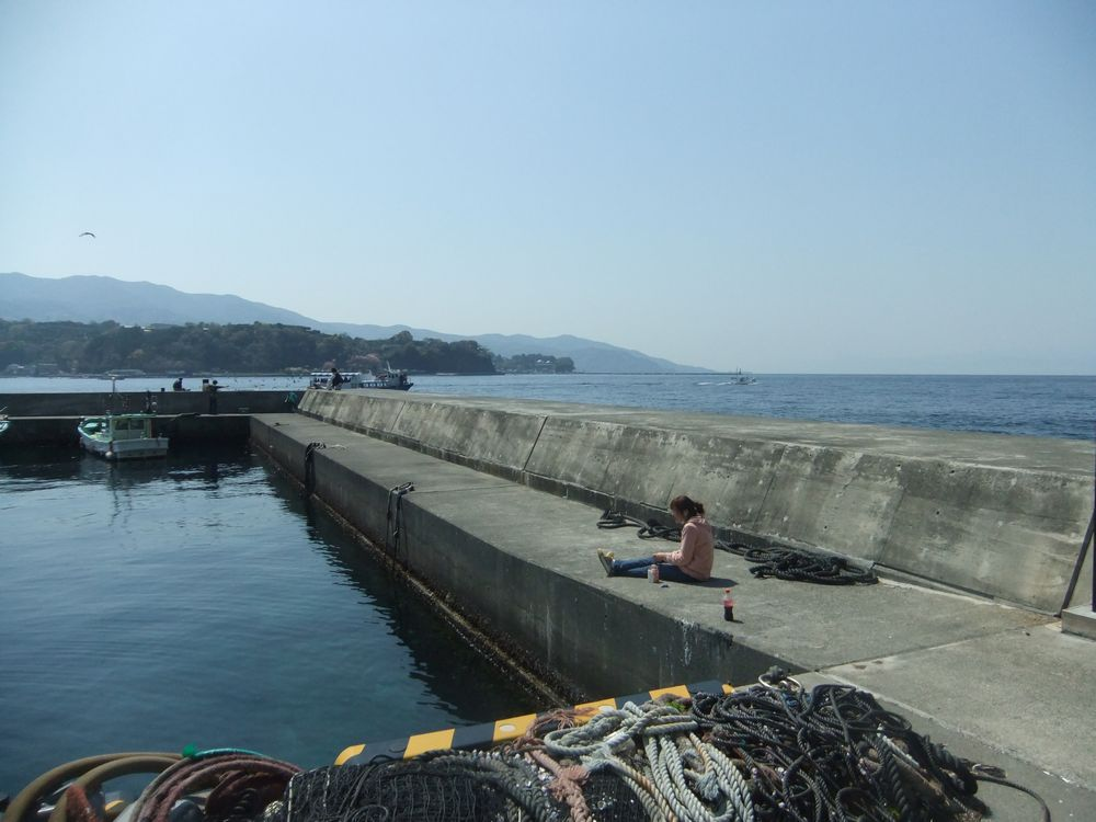 沼津市内浦「小海」堤防の釣り・行き方