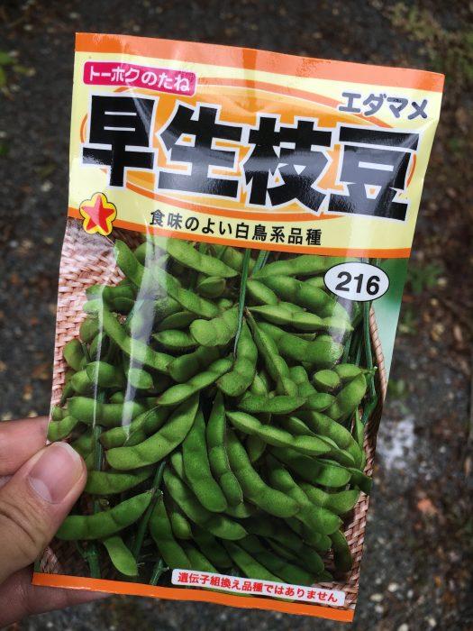 枝豆の種の入った手の平サイズの袋