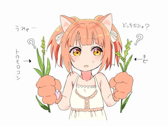猫耳の女の子がトウモロコシとキビを比べているイラスト。