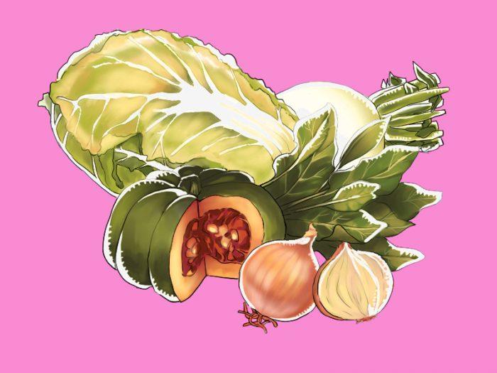 冬野菜のイラスト