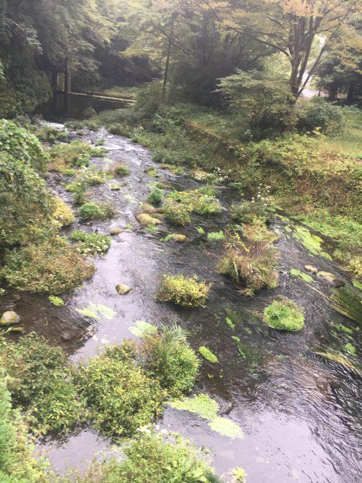 小川の写真