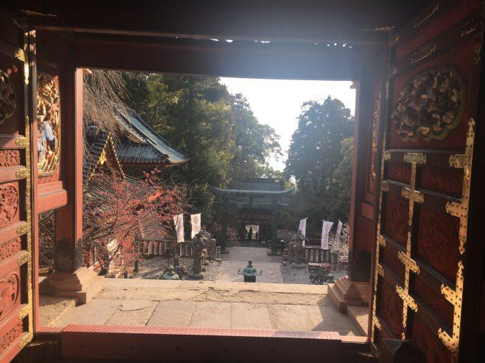 宮からの景色の写真