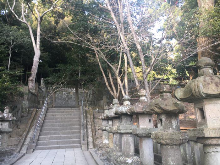 上に向かう階段の写真