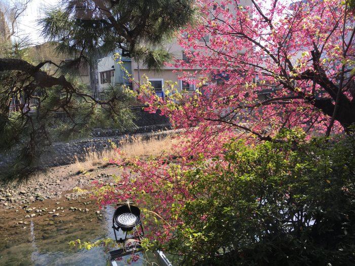 外の風景の写真