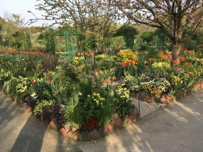 花の美術館の庭園内写真
