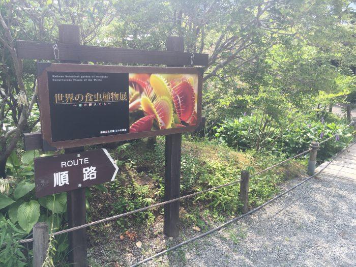 食虫植物の看板