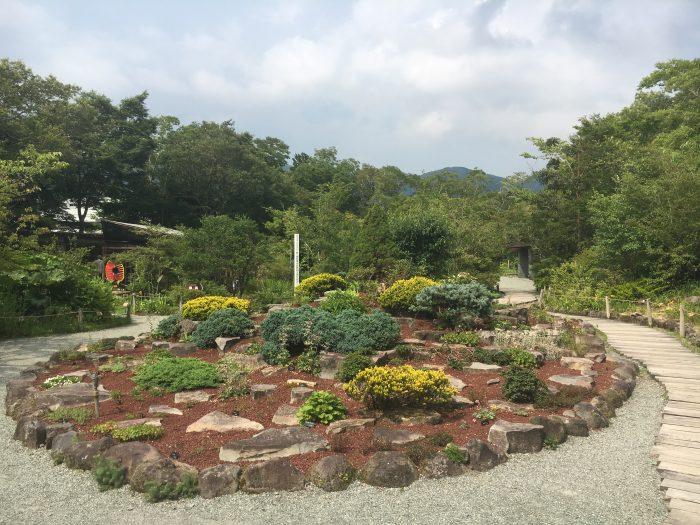 湿生花園園内の写真