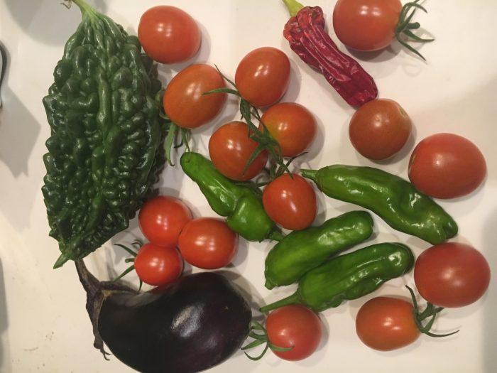 収穫の写真
