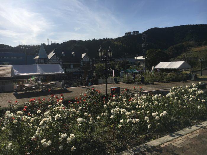 バラの丘園内の写真