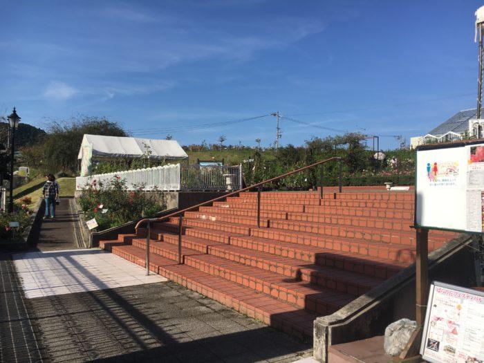 バラの丘の入り口の階段写真
