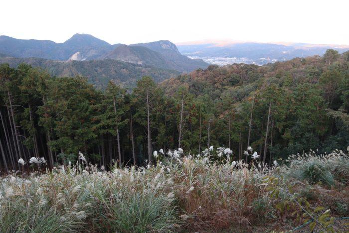 山と町の写真