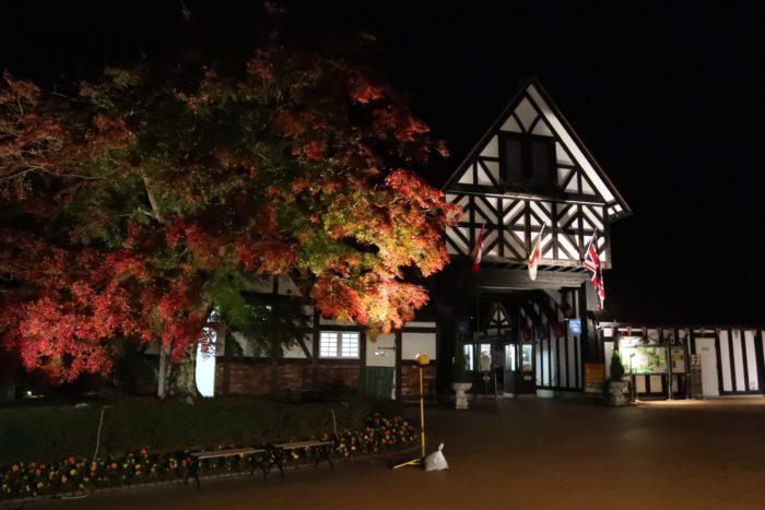 夜の修善寺入り口写真