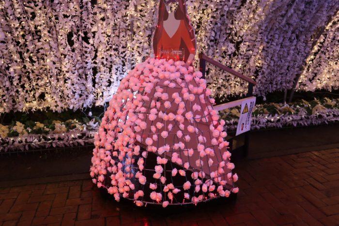 バラのスカートの写真