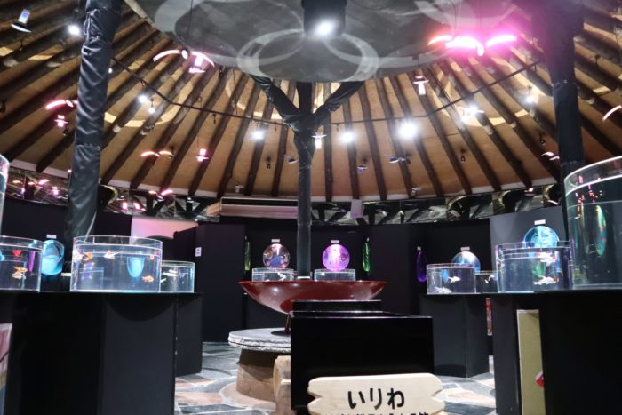 アクアリウム展の内部写真