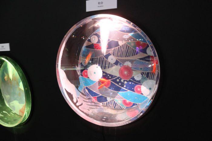 アクアリウムの写真