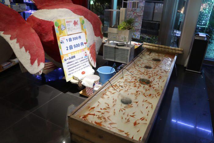 金魚救いの写真