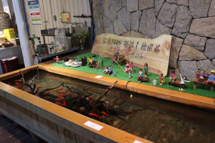 金魚の温泉の写真