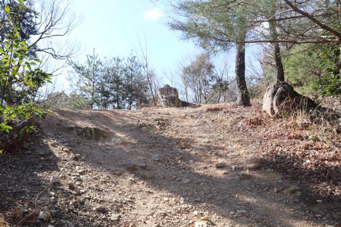 坂の道の写真