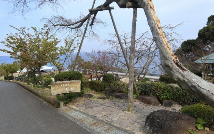 庭園入口写真