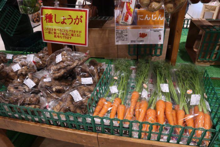 野菜が売っている写真
