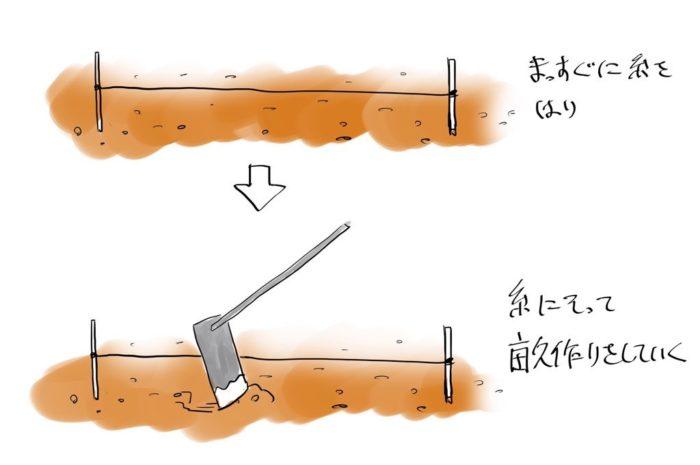 畝の作り方のイラスト